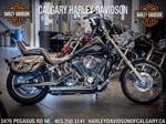Harley-Davidson® FXSTC 2007