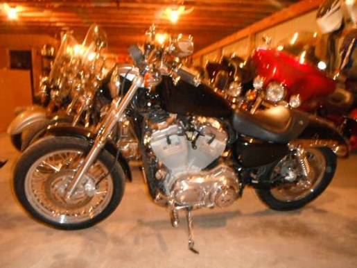 2006 Harley-Davidson Sportster 883 Photo 2 of 4