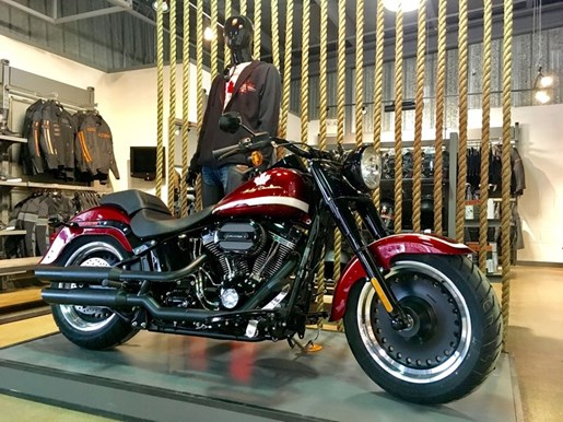 2017 Harley-Davidson FLSTFBS - Fat Boy® S Photo 2 of 16