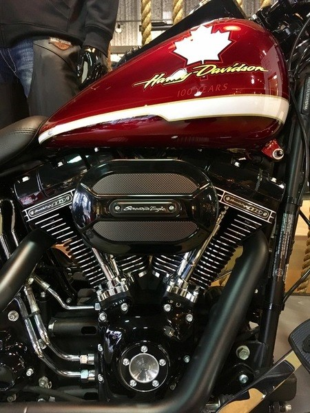 2017 Harley-Davidson FLSTFBS - Fat Boy® S Photo 10 of 16