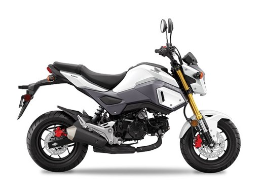 2017 Honda Grom Pearl Himalayas White Photo 1 of 1