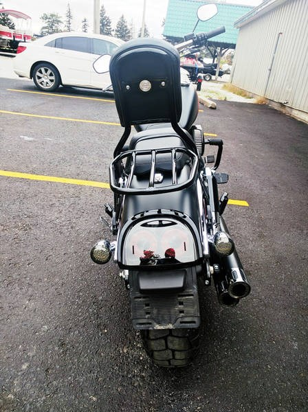 2016 Harley-Davidson FXDF - Dyna® Fat Bob® Photo 8 of 8