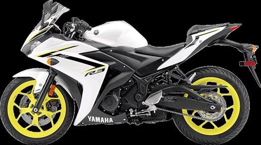 2018 Yamaha YZF-R3 ABS Photo 10 of 10