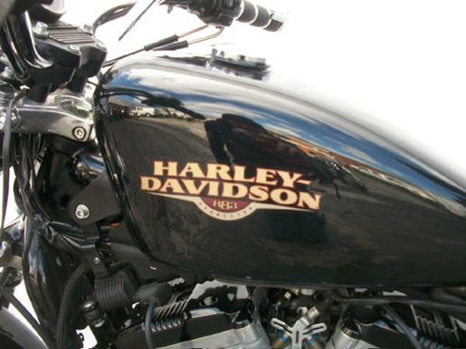 2009 Harley-Davidson Sportster 883 Low Photo 22 of 28