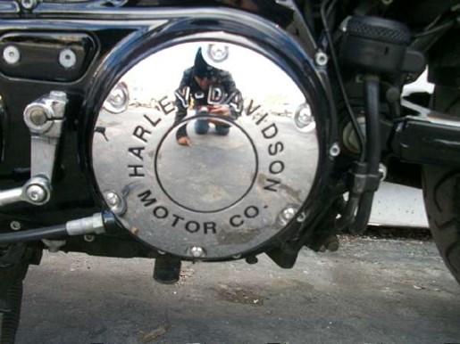 2009 Harley-Davidson Sportster 883 Low Photo 25 of 28