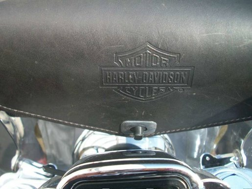 2006 Harley-Davidson FXDL -Dyna Low Rider® Photo 17 of 36