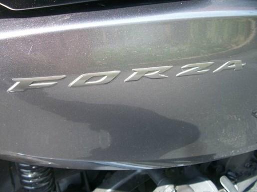 2014 Honda Forza Photo 6 of 15