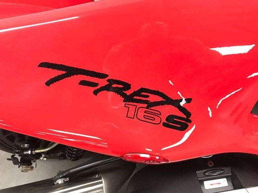 2017 Campagna t-rex 16S Photo 7 of 9