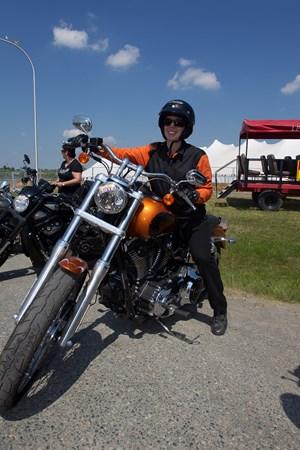Ultimate Harley Lowrider