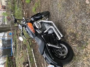 2004 Harley-Davidson 883custom