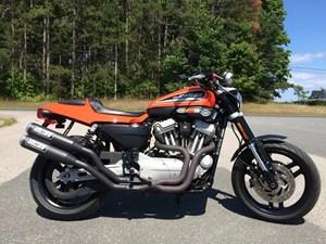 Harley-Davidson Sportster® XR1200™ 2009