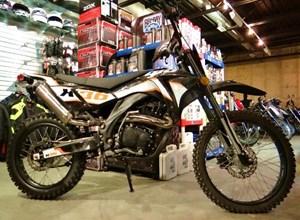 GIO Motors X36 250 2016