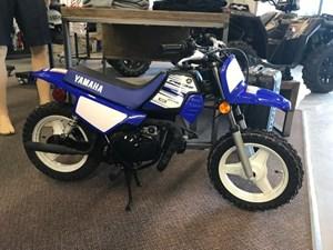 Yamaha PW 2016