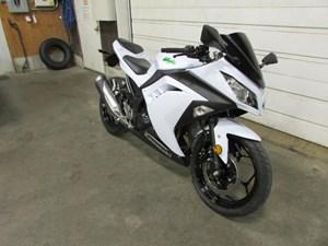 Kawasaki Ninja® 300 2015
