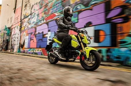 2018 Honda Grom™ Photo 4 of 4
