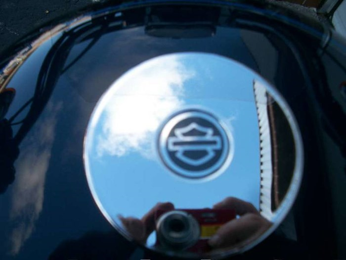 2009 Harley-Davidson Sportster® 1200 Low Photo 9 of 22