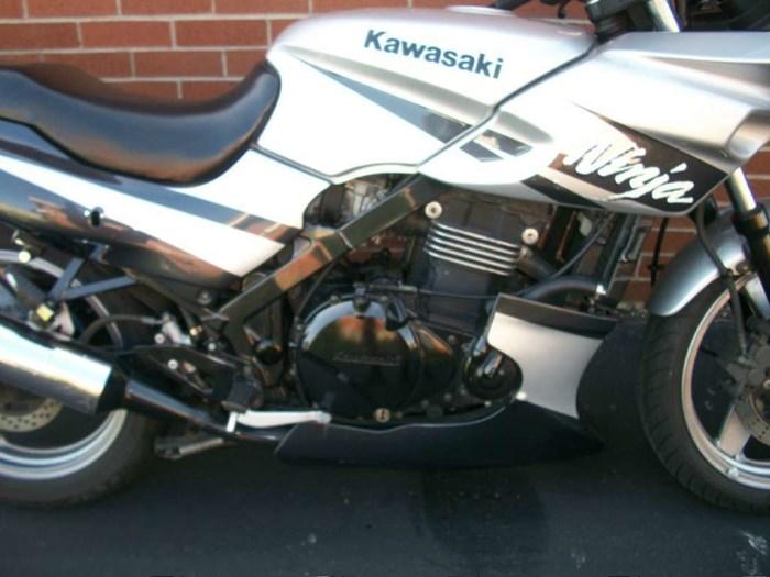 2002 Kawasaki Ninja 500R Photo 2 of 30