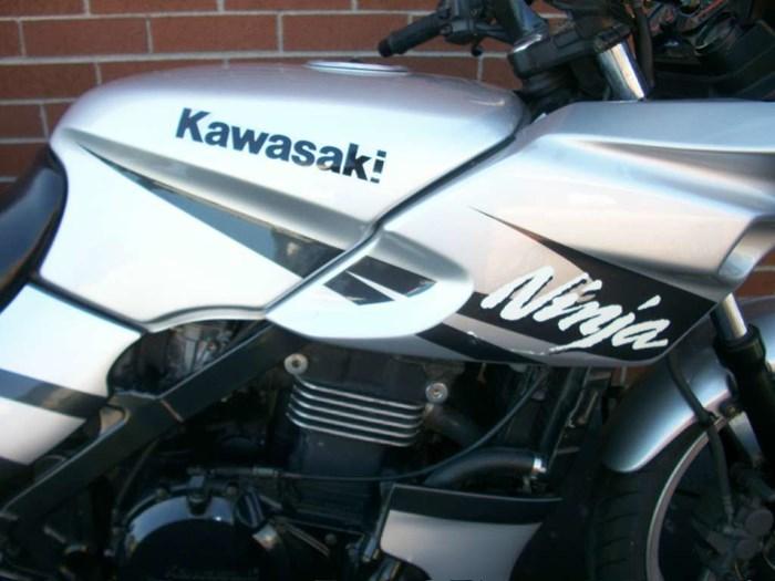 2002 Kawasaki Ninja 500R Photo 3 of 30