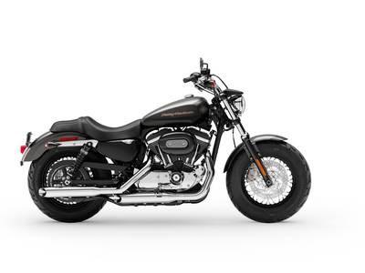 2019 Harley-Davidson XL1200C - Sportster® 1200 Custom Photo 1 of 1