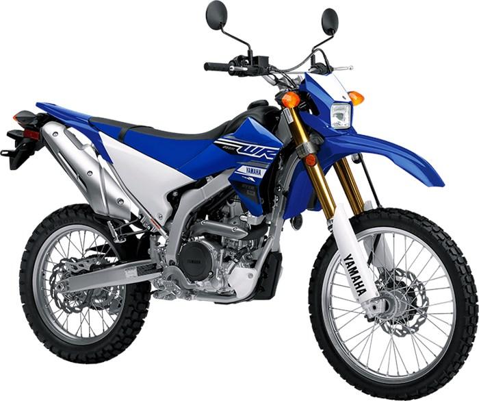 2019 Yamaha WR250R Photo 3 of 4