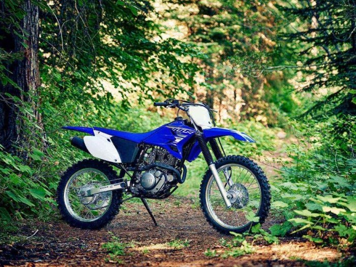 2019 Yamaha TT-R230 Photo 3 sur 5