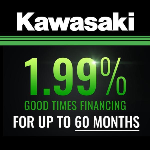 2019 Kawasaki KX250 - Lime Green Photo 2 of 10