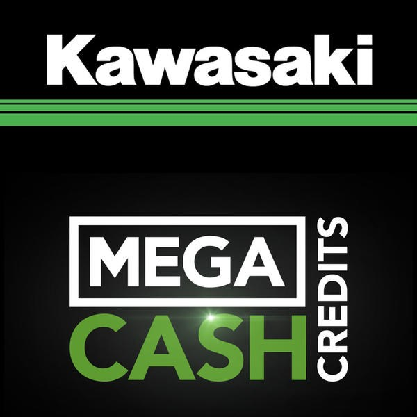 2019 Kawasaki KX250 - Lime Green Photo 9 of 10