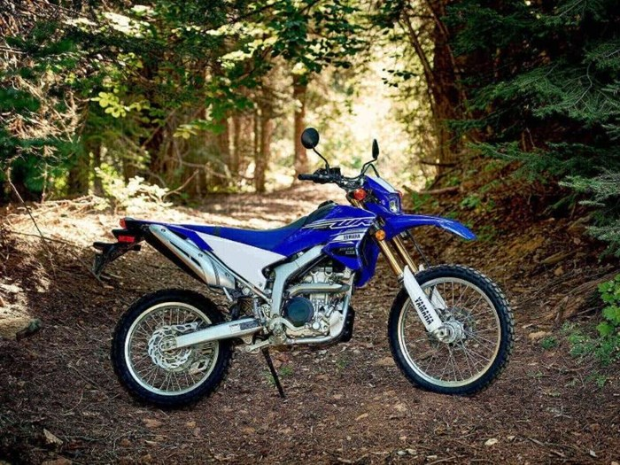 2019 Yamaha WR250R Photo 10 of 14