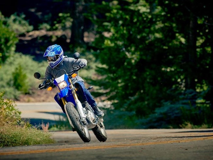 2019 Yamaha WR250R Photo 11 of 14