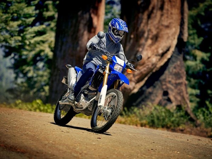 2019 Yamaha WR250R Photo 14 of 14