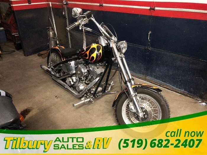 2003 Harley-Davidson 1200 Custom Photo 2 of 11