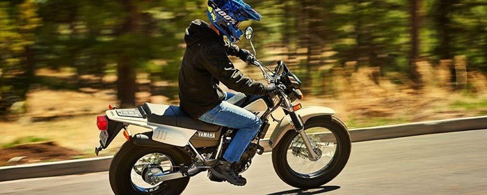 2019 Yamaha TW200E Photo 5 of 10