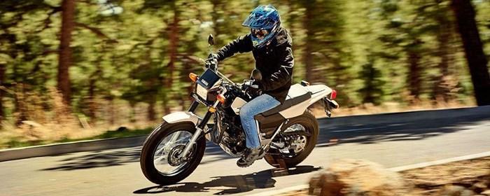 2019 Yamaha TW200E Photo 7 of 11