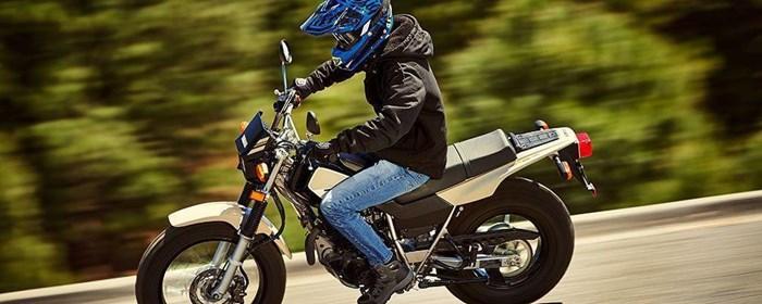 2019 Yamaha TW200E Photo 8 of 11