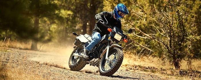 2019 Yamaha TW200E Photo 9 of 11