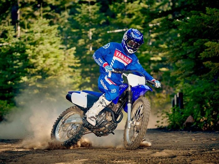 2019 Yamaha TT-R230 Photo 2 of 4