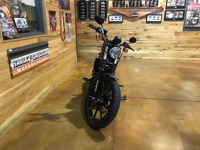 2019 Harley-Davidson XL883N - Sportster® Iron 883™ Photo 5 sur 6