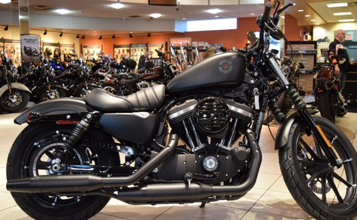 2019 Harley-Davidson Iron 883 Photo 1 of 1