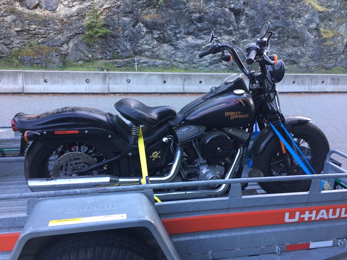2009 Harley-Davidson Crossbones Softtail FLSTSB Photo 3 of 3