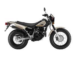 2019 Yamaha TW200E Photo 1 of 1