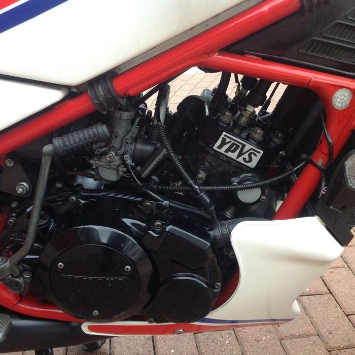 1983 Yamaha RZ 350 Photo 9 of 10