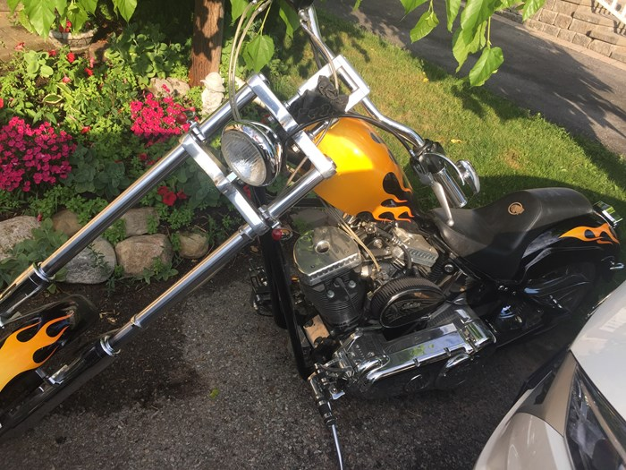 2002 Indian Scout 100 Anniversary Indian Photo 4 sur 4