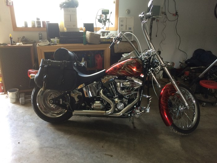 2008 Harley-Davidson FXSTC Photo 3 of 5