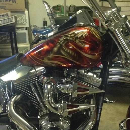 2008 Harley-Davidson FXSTC Photo 1 of 5