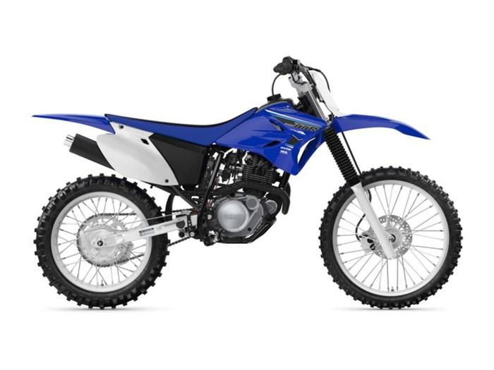 2021 Yamaha TT-R230 Photo 1 of 1