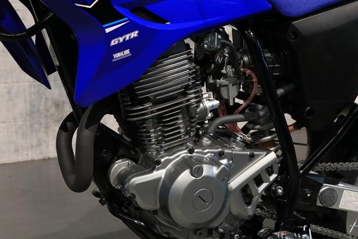 2021 Yamaha TT-R230 Photo 9 of 12