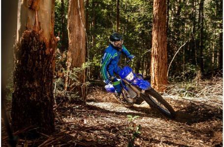 2021 Yamaha WR250F Photo 7 of 9