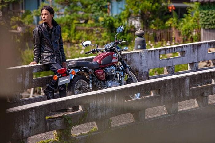 2020 Kawasaki W800 - ROUGE CARDINAL Photo 15 of 23